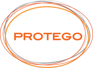 Protego Security